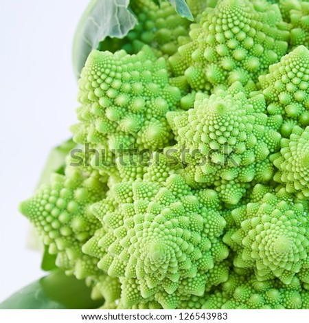 Close up of Romanescu cauliflower. Broccoli variety. White background. - stock photo
