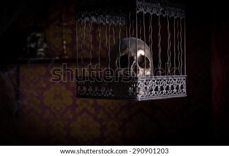 Close Up of Shiny Gothic Skull in Ornate Metal Cage in Room with Patterned Wallpaper, Used for Witchcraft and Casting Spells - stock photo