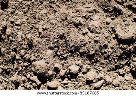 close up of soil background - stock photo