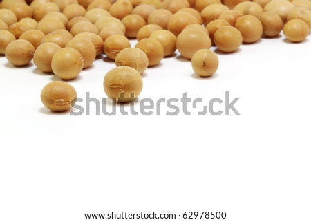 Close up of soybeans on white background - stock photo