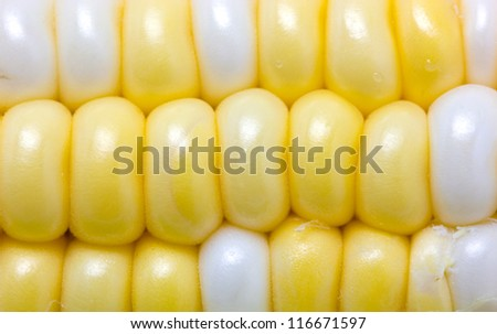 Close up of sweetcorn. - stock photo