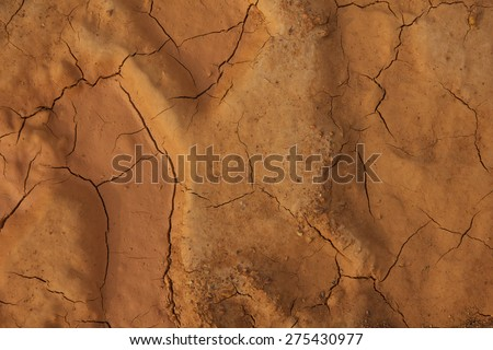 Close up of texture of dry, cracked dry earth. (land) - stock photo