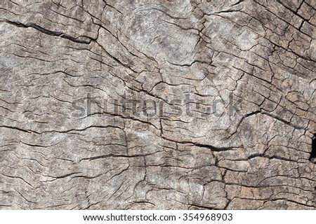 close up of timber to use as background or texture - stock photo