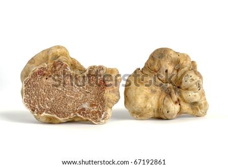 close-up of white truffle (tuber magnatum) isolated on white - stock photo