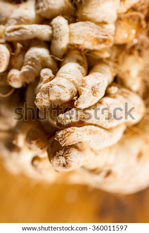 CLose up on a swede, a vegetable part of the Cruciferous vegetables. - stock photo
