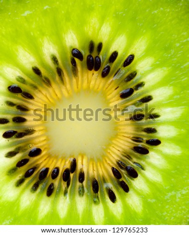 Close up on Kiwi fruit - stock photo