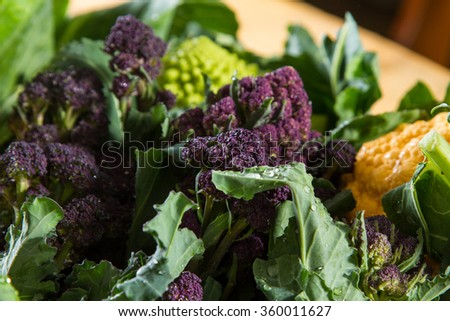 Close up on purple broccoli, with yellow cauliflower and romanesco cauliflower in the background. - stock photo