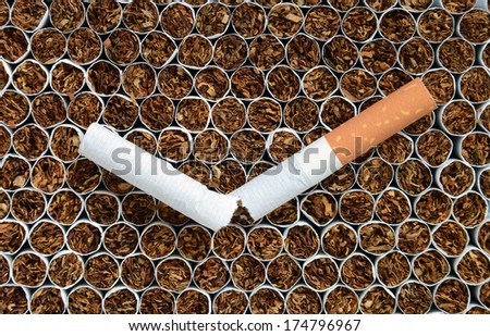 Close up one cigarette against tobacco. - stock photo