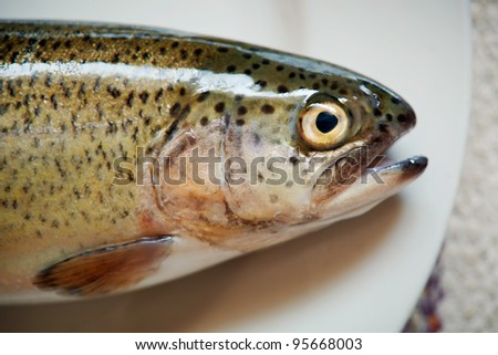 Close-up picture of a fresh fish on the plate, only head is seen. - stock photo