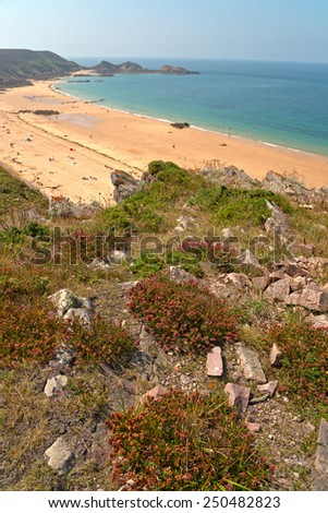 Close up Rocky and Grassy Ground Near the Beautiful Beach on a Tropical Climate. - stock photo