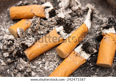 Close up shot of cigarette butts. - stock photo