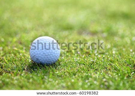 close up shot of golf ball in bright green grass - stock photo