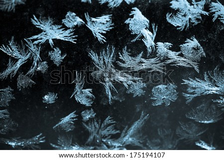 Close-up shot of some icy-flowers on a window - stock photo