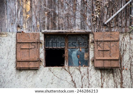 Close-up single wood old window with broken glass in wall of the old abandoned countryside house, overgrown with vines at winter - stock photo
