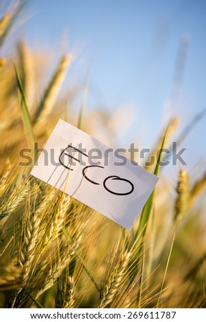 Close up Small White Paper with Conceptual Eco Message on Whole Grain Plants at the Farm. - stock photo