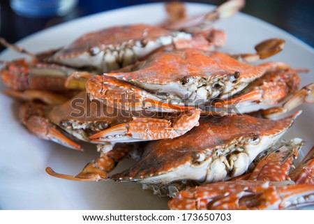 Close-up steamed blue crabs - stock photo