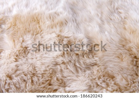 close up texture of fur carpet for background - stock photo