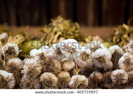 Close-up thai garlic bulbs and garlic cloves on bottom view background - stock photo