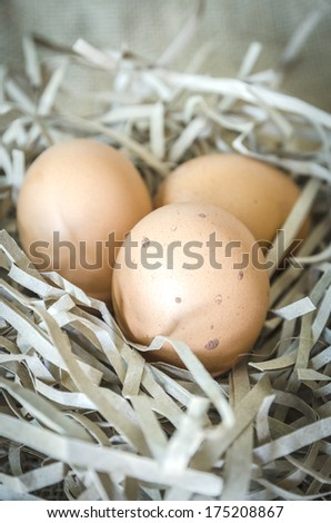 Close-up three eggs on streamers paper. Vintage style - stock photo