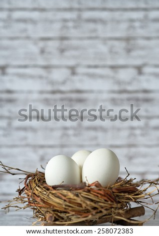 Close up Three White Chicken Eggs in a Nest with Fuzzy Background, Emphasizing Copy Space on Top. - stock photo