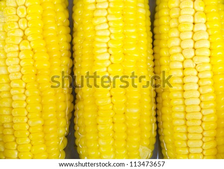 close-up tree corn in hot water - stock photo