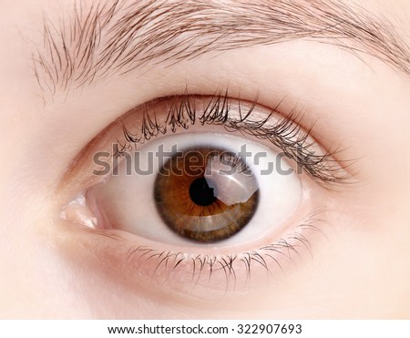 Close up view of a brown wide open woman eye - no make up on - stock photo