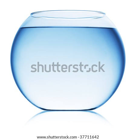 Close up view of fish bowl isolated on white - stock photo