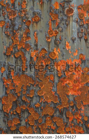 close up view of metal rusted texture - stock photo