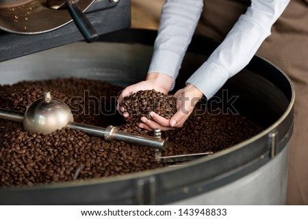 close-up view of roasted coffee beans in woman's hand - stock photo