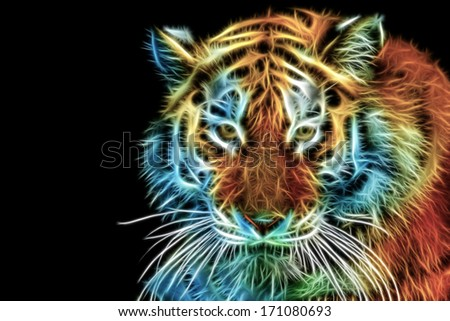 Close up view of tiger head. Horizontally. - stock photo