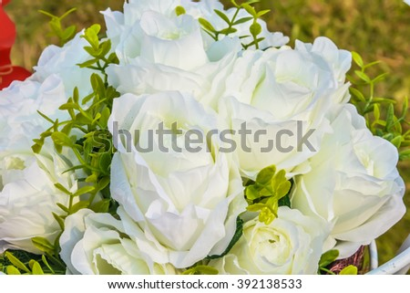 Close up White roses - stock photo