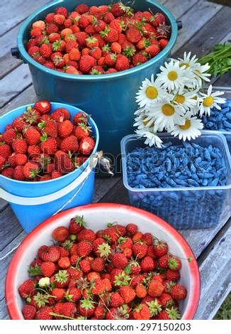 Close up with harvest of summer berry, summer background with strawberry and honeyberry on wooden planks - stock photo