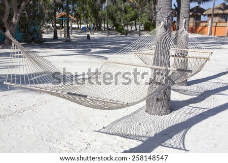 Close view of a hammock on tourist island Little Stirrup Cay (The Bahamas). - stock photo