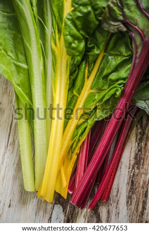 close view on spring rainbow chard, clean eating and dieting concept - stock photo