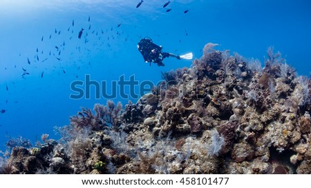 Closed Circuit Rebreather Diver on a Deep Wall - stock photo