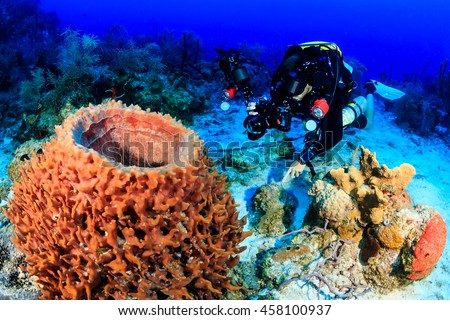 Closed Circuit Rebreather diver photographing a large sponge - stock photo