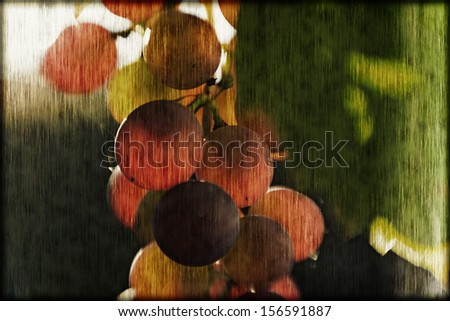 Closeup abstract grapes  - stock photo
