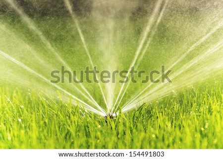 Closeup image of a garden sprinkler on a sunny summer day during watering the green lawn in garden. - stock photo