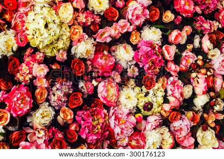Closeup image of beautiful flowers wall background with amazing red and white roses. - stock photo