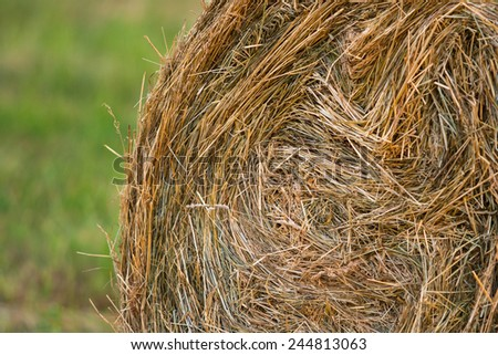 Closeup of a hay bale with grass in background. - stock photo