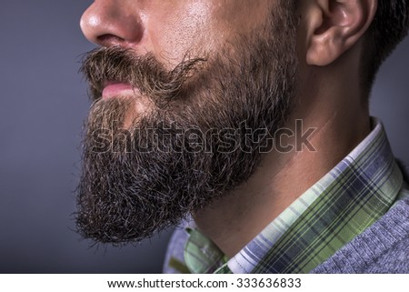 Closeup of a man beard and mustache over gray background.Perfect beard - stock photo