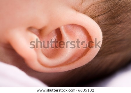 Closeup of a 3 months old baby's ear. Much details. - stock photo