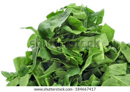 closeup of a pile of chopped raw chard leaves on a white background - stock photo