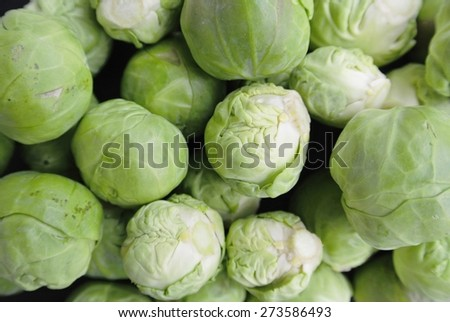 Closeup of a pile of fresh green Brussels sprouts. Healthy/clean eating concept; organic/unprocessed food; paleo diet. - stock photo