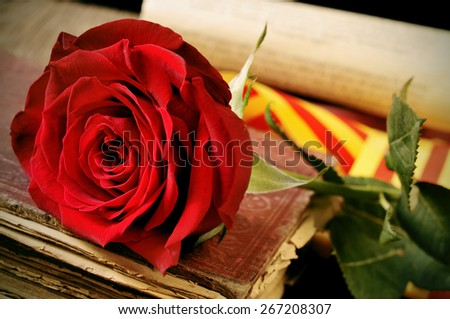 closeup of a red rose and the catalan flag on an old book for Sant Jordi, the Saint Georges Day, when it is tradition to give red roses and books in Catalonia, Spain - stock photo