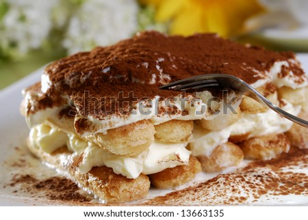 Closeup of a tiramisu on a plate - stock photo