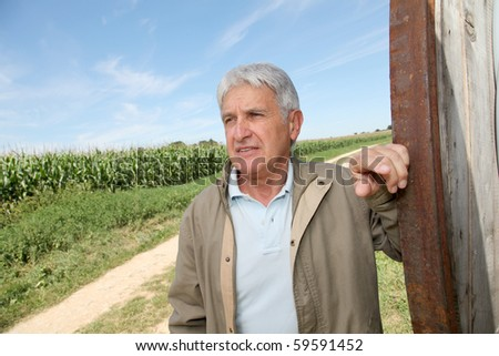 Closeup of agronomist in front of corn field - stock photo