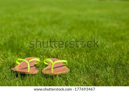 Closeup of bright flip flops on green grass - stock photo