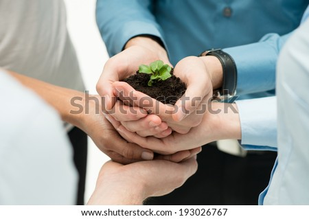 Closeup Of Businesspeople Hand Holding Plant Together  - stock photo