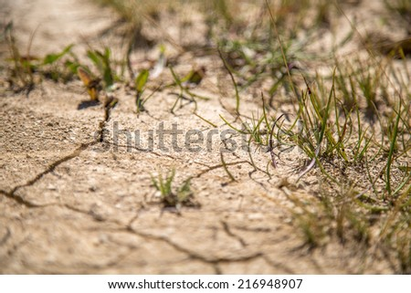 CLoseup of dry soil - stock photo